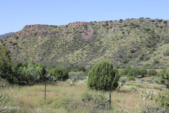 MP 220 N Az-87, Sunflower, AZ 85263 (MLS #6293584) :: Long Realty West Valley