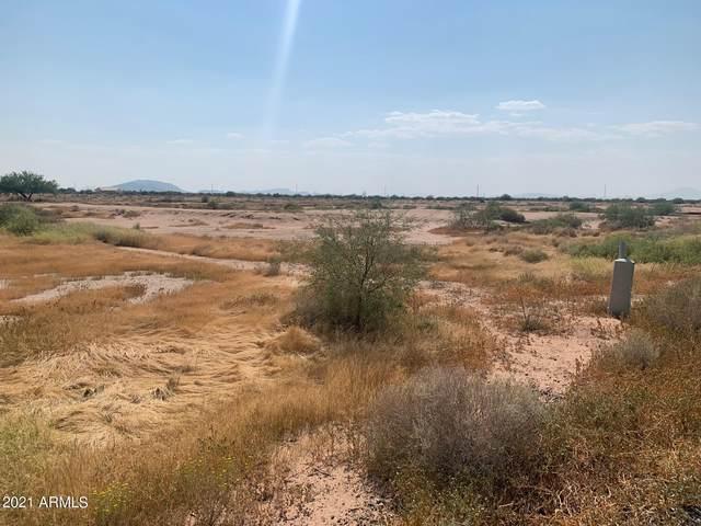909 E Trailblazer Road, Casa Grande, AZ 85193 (MLS #6293623) :: The Daniel Montez Real Estate Group