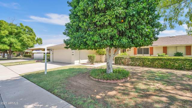 14015 N Tumblebrook Way S, Sun City, AZ 85351 (MLS #6293625) :: Hurtado Homes Group