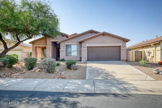18565 W Western Star Boulevard, Goodyear, AZ 85338 (MLS #6293627) :: Elite Home Advisors
