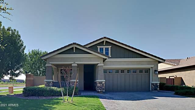 3081 E Arabian Drive, Gilbert, AZ 85296 (MLS #6293649) :: Elite Home Advisors