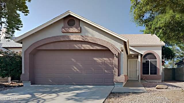 3755 E Broadway Road #36, Mesa, AZ 85206 (MLS #6293664) :: Yost Realty Group at RE/MAX Casa Grande