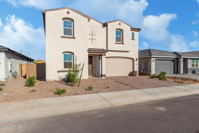 10625 S 55TH Drive, Laveen, AZ 85339 (MLS #6293667) :: Yost Realty Group at RE/MAX Casa Grande