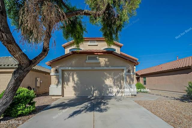 37890 N Amy Lane, San Tan Valley, AZ 85140 (MLS #6293676) :: Yost Realty Group at RE/MAX Casa Grande