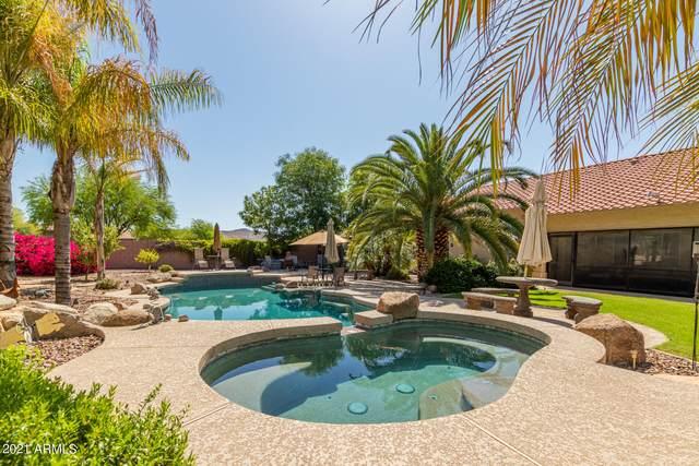 7124 W Avenida Del Sol, Peoria, AZ 85383 (MLS #6293680) :: Klaus Team Real Estate Solutions
