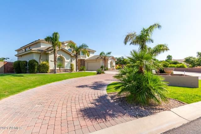 2884 E Clifton Court, Gilbert, AZ 85295 (MLS #6293694) :: Elite Home Advisors