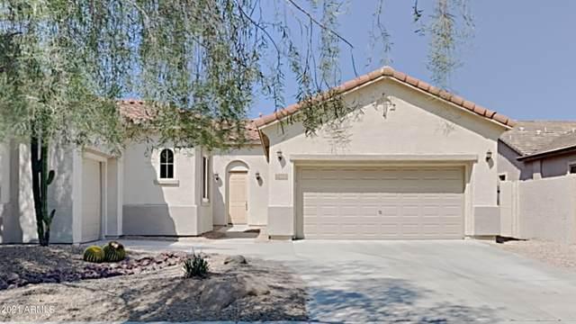 2410 W Aloe Vera Drive, Phoenix, AZ 85085 (MLS #6293719) :: Klaus Team Real Estate Solutions