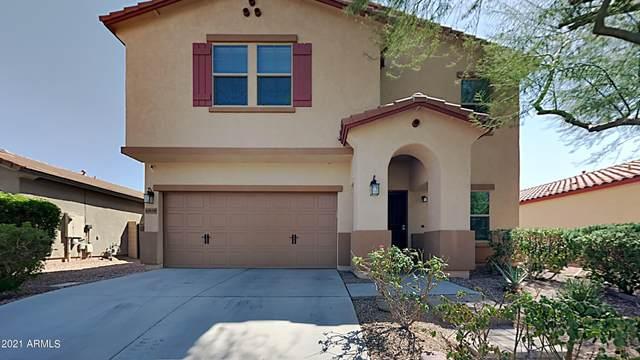 10839 W Avenida Del Rey, Peoria, AZ 85383 (MLS #6293724) :: Elite Home Advisors