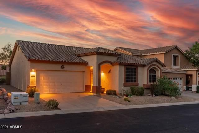 9526 E Obsidian Court, Gold Canyon, AZ 85118 (MLS #6293746) :: Yost Realty Group at RE/MAX Casa Grande