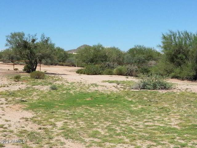 283XX N 141st Street, Scottsdale, AZ 85262 (MLS #6293768) :: My Home Group