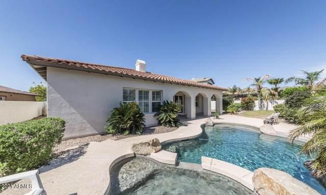 20694 W Founder Circle, Buckeye, AZ 85396 (MLS #6293774) :: Klaus Team Real Estate Solutions