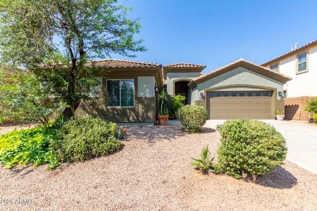 18798 N Arbor Drive, Maricopa, AZ 85138 (MLS #6293776) :: Yost Realty Group at RE/MAX Casa Grande