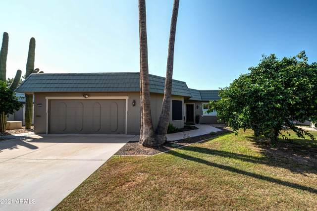 10501 W Campana Drive, Sun City, AZ 85351 (MLS #6293786) :: The Laughton Team