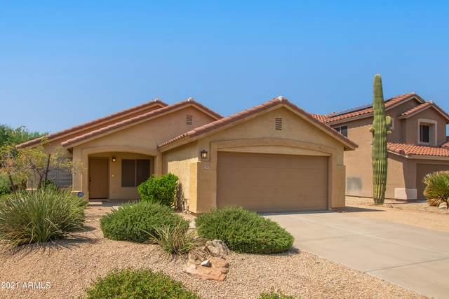 24014 N 36TH Drive, Glendale, AZ 85310 (MLS #6293789) :: Hurtado Homes Group