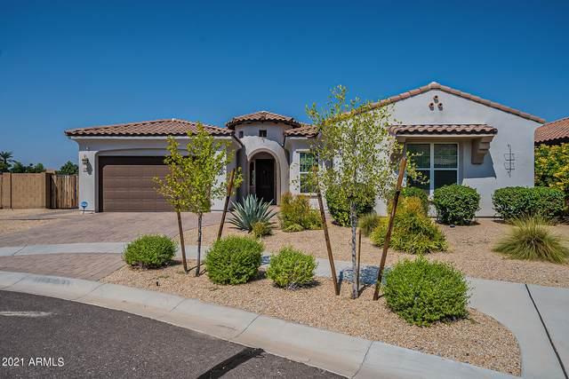 3110 E Valencia Drive, Phoenix, AZ 85042 (MLS #6293821) :: Yost Realty Group at RE/MAX Casa Grande