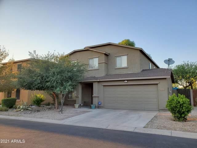 2528 E Meadow Creek Way, San Tan Valley, AZ 85140 (MLS #6293841) :: Elite Home Advisors
