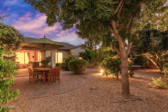 14874 W Luna Circle, Litchfield Park, AZ 85340 (MLS #6293850) :: Hurtado Homes Group