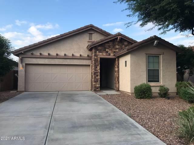 12097 W Dove Wing Way, Peoria, AZ 85383 (MLS #6293859) :: Maison DeBlanc Real Estate