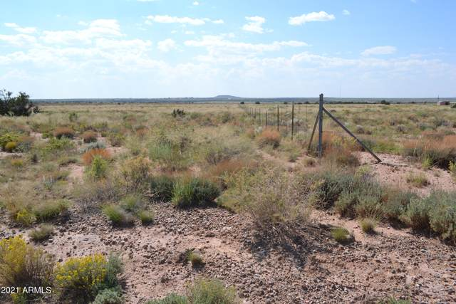 564 Old Woodruff Road, Snowflake, AZ 85937 (#6293864) :: AZ Power Team