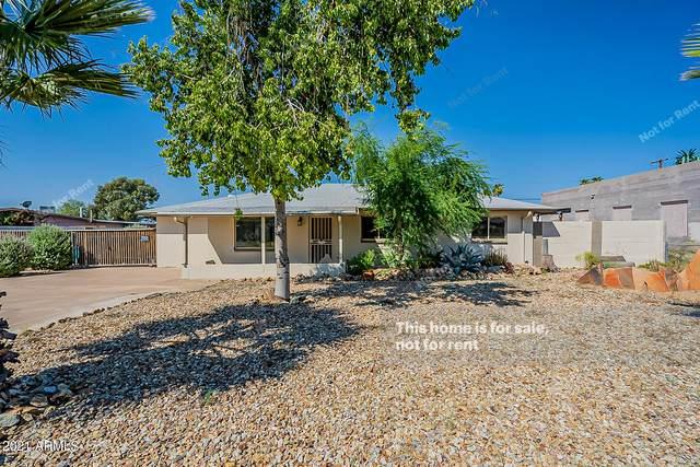 16832 N 17TH Street, Phoenix, AZ 85022 (MLS #6293875) :: Klaus Team Real Estate Solutions