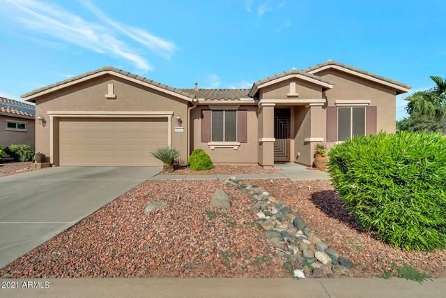 20141 N Oxbow Lane N, Maricopa, AZ 85138 (MLS #6293891) :: Elite Home Advisors
