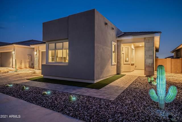 2831 E Robin Lane, Phoenix, AZ 85050 (MLS #6293896) :: Arizona 1 Real Estate Team