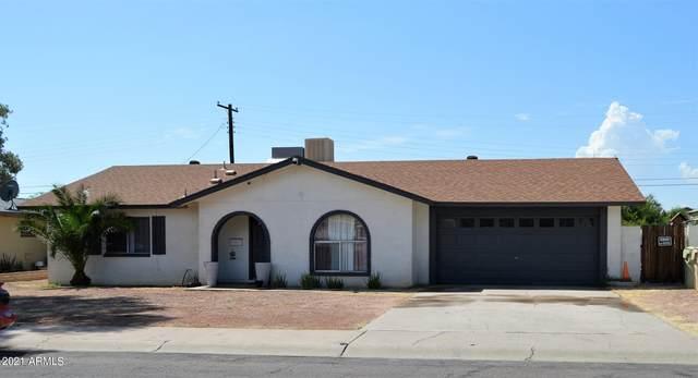 8114 N 56TH Avenue, Glendale, AZ 85302 (MLS #6293922) :: Elite Home Advisors