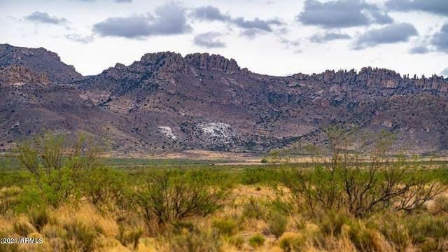 Three Triangle Ranches #38, 30 Acres, Portal, AZ 85632 (MLS #6293953) :: Keller Williams Realty Phoenix