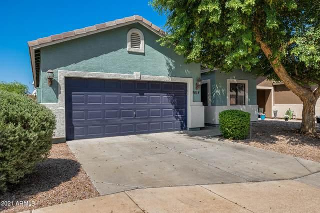 6614 S 10TH Drive, Phoenix, AZ 85041 (MLS #6293998) :: Yost Realty Group at RE/MAX Casa Grande