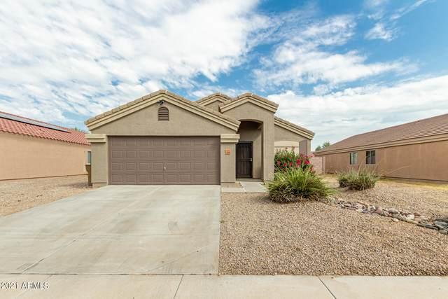 15950 W Gibson Lane, Goodyear, AZ 85338 (MLS #6294033) :: Power Realty Group Model Home Center