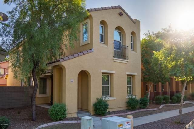 7829 W Monte Vista Road, Phoenix, AZ 85035 (MLS #6294036) :: The Riddle Group