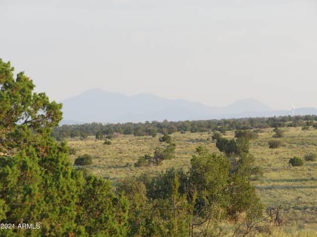 4475 S Starlit Trail, Williams, AZ 86046 (MLS #6294056) :: Executive Realty Advisors