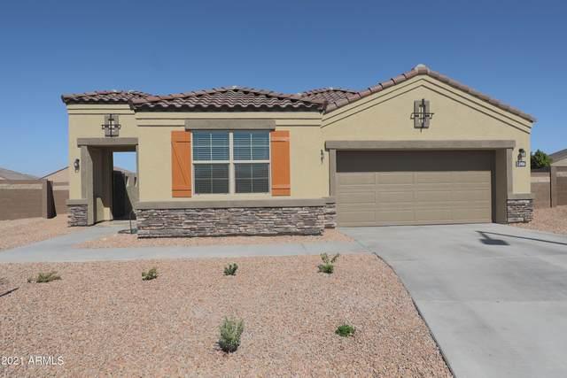 3966 N 301ST Circle, Buckeye, AZ 85396 (#6294058) :: AZ Power Team