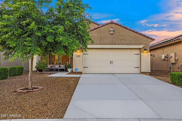10248 W Puget Avenue, Peoria, AZ 85345 (MLS #6294074) :: Hurtado Homes Group