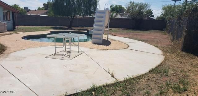 5116 N 60TH Drive, Glendale, AZ 85301 (MLS #6294102) :: Hurtado Homes Group