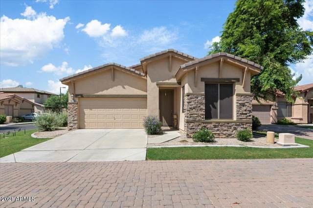 2062 W Olive Way, Chandler, AZ 85248 (MLS #6294104) :: The Everest Team at eXp Realty