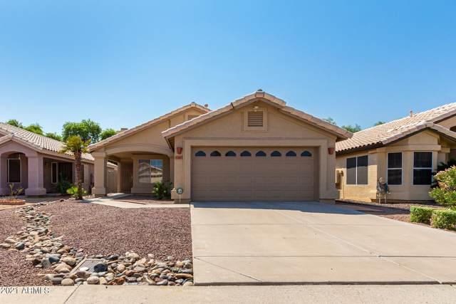 8343 W Bloomfield Road, Peoria, AZ 85381 (MLS #6294108) :: Hurtado Homes Group