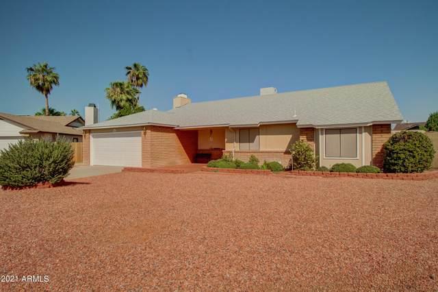 16410 N 9TH Place, Phoenix, AZ 85022 (MLS #6294135) :: Hurtado Homes Group