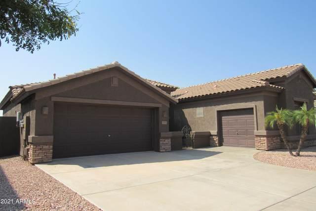 7131 W Cottontail Lane, Peoria, AZ 85383 (MLS #6294160) :: Hurtado Homes Group