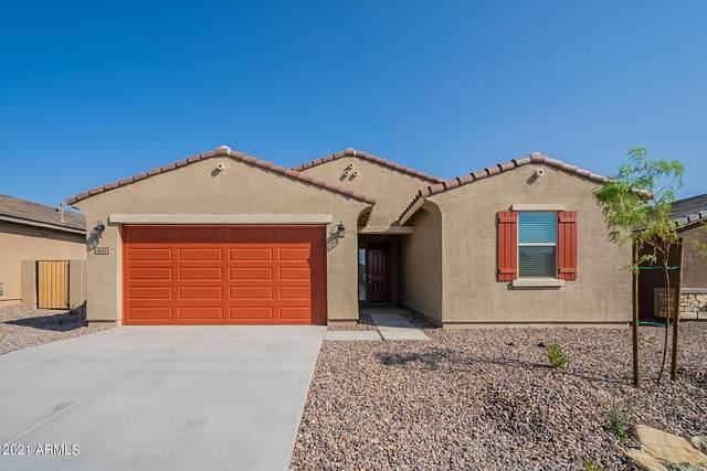 4624 W Bush Bean Way, Queen Creek, AZ 85142 (MLS #6294162) :: NextView Home Professionals, Brokered by eXp Realty