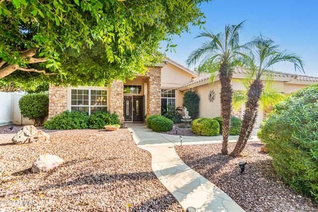 6289 W Donald Drive, Glendale, AZ 85310 (MLS #6294164) :: Hurtado Homes Group
