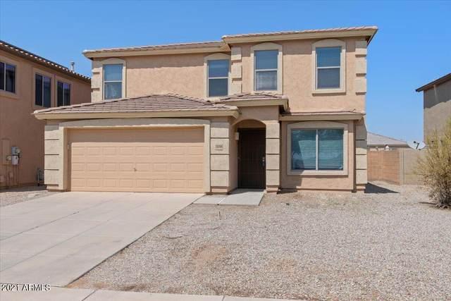 11098 E Wallflower Lane, Florence, AZ 85132 (MLS #6294177) :: Hurtado Homes Group