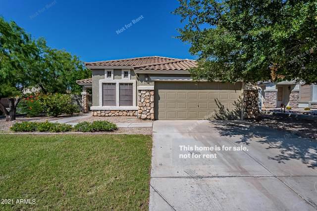 9054 E Hillview Circle, Mesa, AZ 85207 (MLS #6294183) :: Hurtado Homes Group