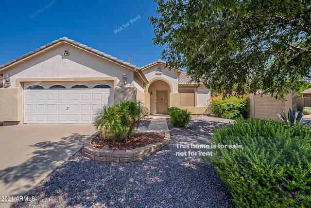 7634 E Dover Street, Mesa, AZ 85207 (MLS #6294193) :: Hurtado Homes Group