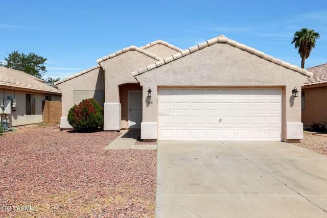 868 E Via Elena Street, Goodyear, AZ 85338 (MLS #6294200) :: Hurtado Homes Group