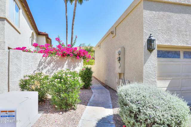 5018 E Siesta Drive #3, Phoenix, AZ 85044 (MLS #6294219) :: Hurtado Homes Group