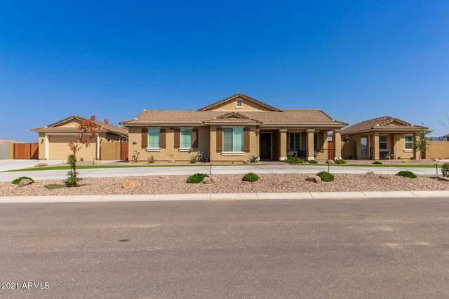 31731 N Marshall Drive, Queen Creek, AZ 85142 (MLS #6294221) :: Keller Williams Realty Phoenix