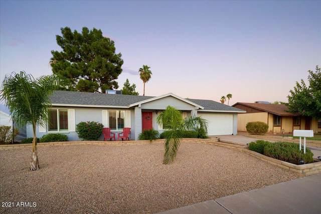 17217 N 34TH Street, Phoenix, AZ 85032 (MLS #6294223) :: Hurtado Homes Group
