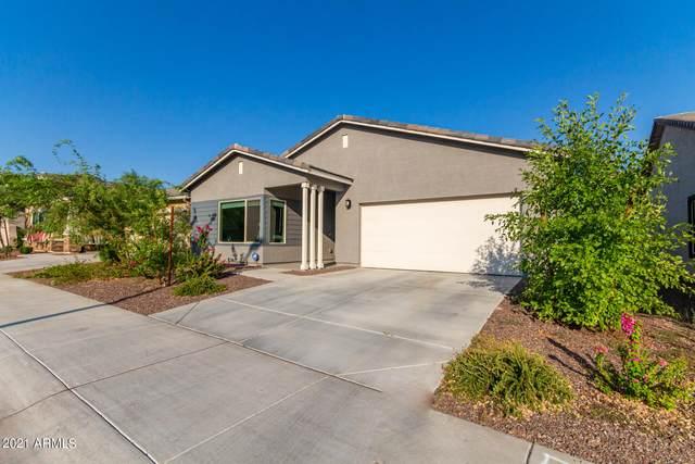 2129 N 212TH Lane, Buckeye, AZ 85396 (MLS #6294229) :: ASAP Realty