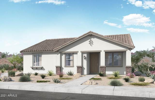 14235 W Hackamore Drive, Surprise, AZ 85387 (MLS #6294233) :: ASAP Realty